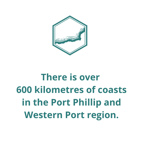 There is over  600 kilometres of coasts in the Port Phillip and Western Port region.