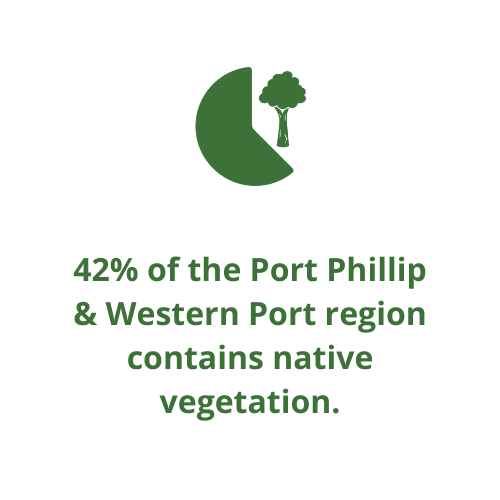42% of the Port Phillip & Western Port region is native vegetation.