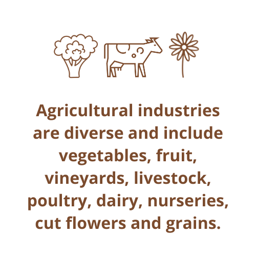 Agricultural industries are diverse and include vegetables, fruit, vineyards, livestock, poultry, dairy, nurseries, cut flowers and grains.