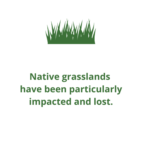 Native grasslands  have been particularly impacted and lost.