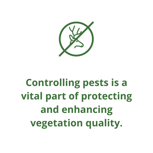 Controlling pests is a vital part of protecting and enhancing vegetation quality.