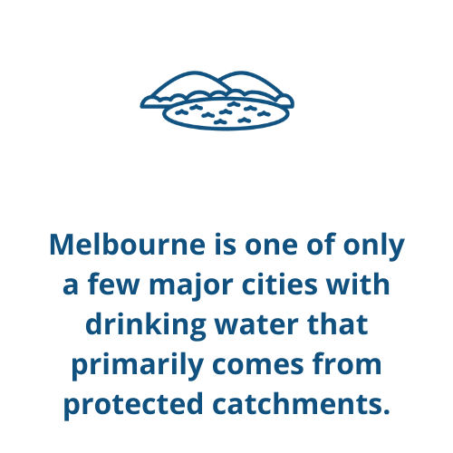 Melbourne is one of only a few major cities with drinking water that primarily comes from protected catchments.