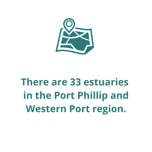 There are 33 estuaries  in the Port Phillip and Western Port region.