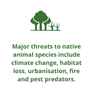 Major threats to native animal species include climate change, habitat loss, urbanisation, fire and pest predators.
