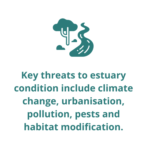Key threats to estuary condition include climate change, urbanisation, pollution, pests and habitat modification.