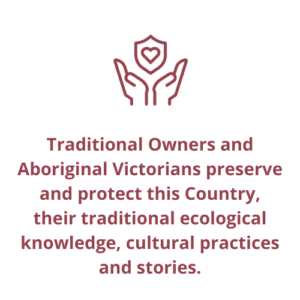Traditional Owners and Aboriginal Victorians preserve and protect this Country, their traditional ecological knowledge, cultural practices and stories.