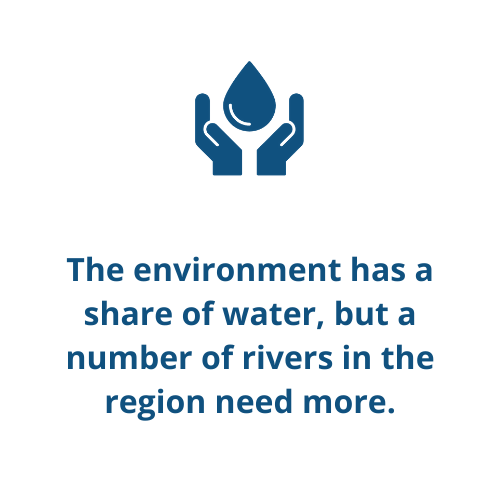 The environment has a share of water, but a number of rivers in the region need more.