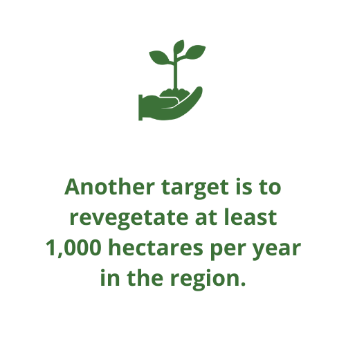 Another target is to revegetate at least 1,000 hectares per year in the region.
