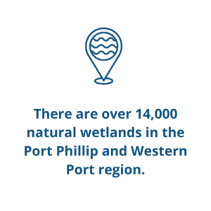 There are over 14,000 natural wetlands in the Port Phillip and Western Port region.