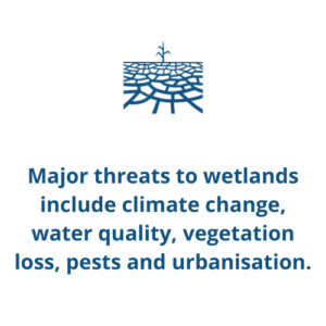 Major threats to wetlands include climate change, water quality, vegetation loss, pests and urbanisation.